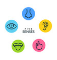 five human senses vision eye smell nose hearing vector image vector image