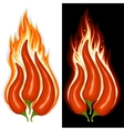 Hot chili pepper vector image