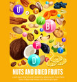 multivitamins complex in nuts and dried fruits vector image vector image