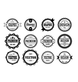 set of vintage icons vector image vector image