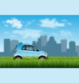 small car on grass vector image