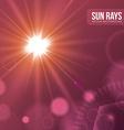 Sun rays design vector image
