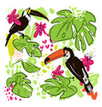 tropical hand draw collection with monstera vector image vector image