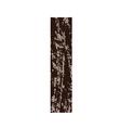 bark letter I vector image vector image