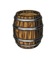 beer wooden cask colorful concept vector image vector image