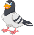 Cartoon funny pigeon isolated on white background