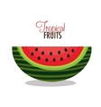 icon watermelon slice fruit design vector image