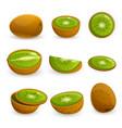 kiwi icon set cartoon style vector image
