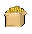 open box with coins cash money inside vector image vector image