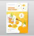 organic raw honey design brochure abstract vector image