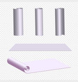 realistic of a paper roll for vector image vector image