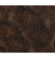 Seamless structured snake skin vector image vector image