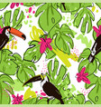 tropical hand draw seamless pattern with monstera vector image vector image
