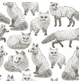 fox seamless pattern sketch hand drawn vector image vector image