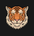 head of tiger face of wild animal hand drawn vector image