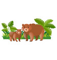 mother bear and little cub vector image vector image