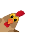 Rooster isolated on white background vector image vector image