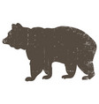bear silhouette with scratched grunge effect vector image