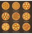 different type pizza vector image vector image