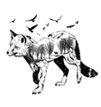 Double exposure silhouette of fox wildlife concep vector image vector image