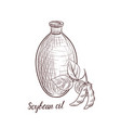 drawing soybean oil vector image