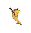 Trout Fish Baseball Player Batting Cartoon vector image vector image