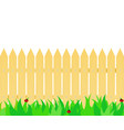 grass in front of the fence vector image vector image