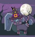 halloween cute cat cartoons vector image vector image