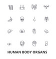 human body organs human body medical human vector image