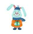 isolated cute rabbit is dressed in winter clothes vector image