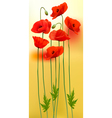Nature background with red beauty poppies vector image vector image