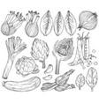 set nature mediterranean vegetables fresh vector image vector image