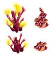 set of colorful marine cartoon partially eaten vector image vector image