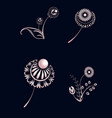 set of elements of floral ornament from pink gold vector image vector image