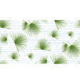 tropical fan palm leaves jungle green leaf vector image