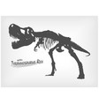 tyrannosaurus rex skeleton silhouette on gray vector image