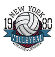Volleyball College League New YorkT-shirt vector image vector image