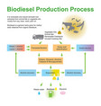 biodiesel production process vector image