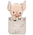 cute lovely cartoon pig on pocket vector image vector image