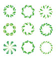frame leaf circle leaves organic green vector image vector image