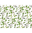 leaves and interwinted green branches foliage vector image vector image