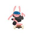 rabbit wearing helmet riding skateboard funny vector image vector image