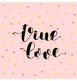 True love Brush lettering vector image vector image