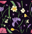 floral seamless pattern with beautiful blooming vector image vector image