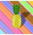 Fresh Ripe Pineapple on Colorful Planks vector image vector image