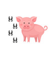 pink pig and his footprints farm animal domestic vector image