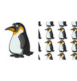seamless background design with little penguin vector image vector image