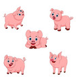 set of cute pigs vector image vector image
