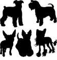 set silhouettes dogs 4 vector image