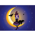 Witch on the Moon2 vector image vector image